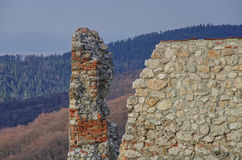Cracked wall. Of on ancient citadel in a forest Stock Images