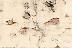 Cracked wall and plaster Royalty Free Stock Image