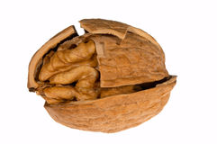 Cracked walnut Royalty Free Stock Image
