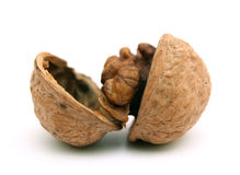 Cracked walnut. Royalty Free Stock Image