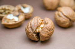 Cracked walnut on the background of other blurred walnuts Stock Photography