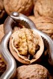 Cracked walnut close up inside silver nutcracker Stock Photos