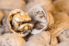 Cracked walnut closeup Royalty Free Stock Photos
