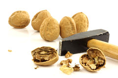 A cracked walnut with a hammer Stock Image