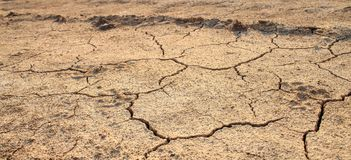 Cracked waterless ground. Natural disasters Stock Photo
