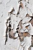 Cracked white Stock Photography