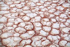 Cracked white dry clay surface on orange sand background in Etosha salt pan Namib desert top view closeup stock photo