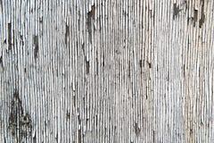 Cracked white paind Stock Photo