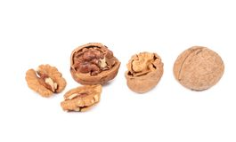 Cracked and whole walnut Stock Images
