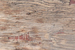 Cracked wood Stock Photography