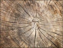 Cracked wood background texture Stock Photos