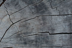 Cracked wood background. Stock Photography