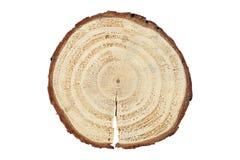 Wood log Royalty Free Stock Photo