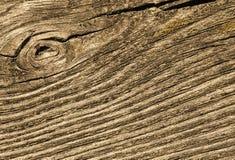 Cracked wood macro Stock Images