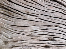 Cracked wood profile surface texture Stock Photo