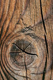 Cracked wood texture Stock Image
