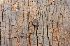 Cracked Wood Texture with Knot Stock Photography