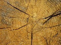 Cracked wood texture Royalty Free Stock Images