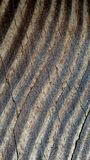 Cracked Wooden Background with Highlighted Tree Rings. Wooden plank showing dark tree rings, cracked and pitted surface. Old, textured, wood background with dark Royalty Free Stock Images