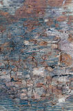 Cracked wooden textre Stock Photography