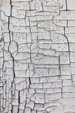 Cracked wooden texture Royalty Free Stock Photos