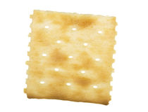 Cracker. Square unsalted top cracker; isolated on white background royalty free stock images