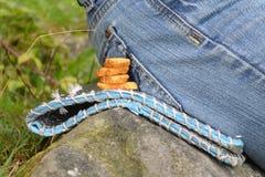 Cracker che si trovano accanto all'uomo in jeans, uno spuntino durante la campagna fotografia stock