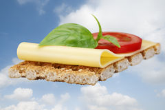 Cracker with cheese Stock Image