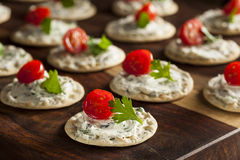 Cracker and Cheese Hors D'oeuvres Stock Image