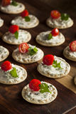 Cracker and Cheese Hors D'oeuvres Stock Photo