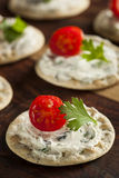 Cracker and Cheese Hors D'oeuvres Stock Images