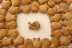 Cracker dei biscotti sotto forma di pesce su un fondo bianco Fotografia Stock Libera da Diritti