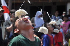 Cracker eating contest Stock Image