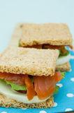 Cracker sandwich with smoked salmon Royalty Free Stock Image