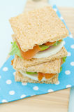 Cracker sandwich with smoked salmon Royalty Free Stock Photos