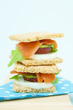 Cracker sandwich with smoked salmon Stock Photos