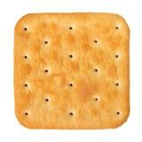 Cracker. Tasty cracker isolated on white royalty free stock image