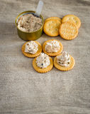 Cracker with tuna spread Stock Image