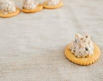Cracker with tuna spread Royalty Free Stock Photos
