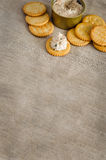 Cracker with tuna spread Royalty Free Stock Photography