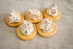 Cracker with tuna spread Stock Images