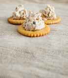 Cracker with tuna spread Royalty Free Stock Photos