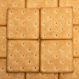 Crackers background. Cheese crackers background. Texture of cookies Royalty Free Stock Photography