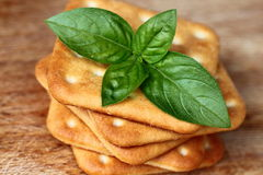 Crackers and basil. Pile of square crackers with fresh basil Royalty Free Stock Photo