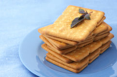 Crackers with basil in plate Stock Image