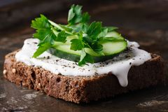 Crackers with cottage cheese, radish, cucumber decorated with cress salad and fresh herbs Royalty Free Stock Photography