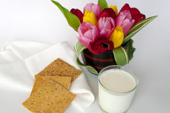 Crackers and milk Royalty Free Stock Images