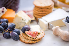 Crackers with selection of cheese Royalty Free Stock Photo