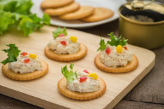 Crackers with tuna salad on wooden plate and tuna spread in canned Stock Photography