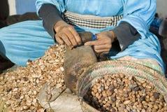 Free Cracking Argan Nuts Stock Images - 11219324